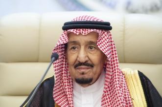 الملك سلمان يعلن ختام أعمال القمة العربية الطارئة بمكة - المواطن