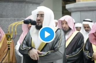 فيديو.. تلاوة خاشعة للشيخ بندر بليلة من تراويح ليلة 15 رمضان بمكة - المواطن