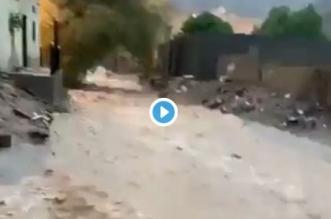 فيديو.. المدني يكشف الحالة الصحية لطفل سيل نجران.. راقبوا أطفالكم - المواطن