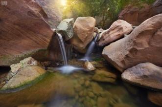 شلالات مائية وحدائق معلقة تقدم للزائرين المتعة والجمال في وادي لجب - المواطن