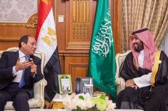 الأمير محمد بن سلمان والرئيس المصري يستعرضان فرص تطوير العلاقات - المواطن
