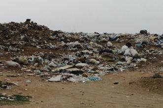 قرية أبو حجر بصامطة تخنقها النفايات وبدون أعمدة إنارة أو مياه ومقابرها مفتوحة! - المواطن