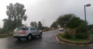 ضباب وأمطار رعدية مع غبار على 5 مناطقاليوم