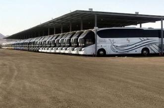 أكثر من 1700 حافلة مجهزة لنقل ضيوف الرحمن - المواطن