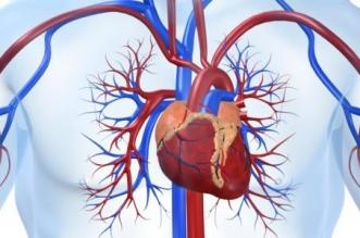هل ارتفاع إنزيمات القلب مؤشر لحدوث جلطة؟ - المواطن
