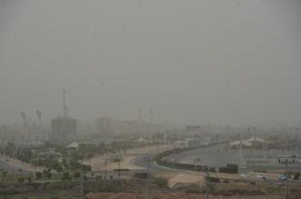 انخفاض في درجات الحرارة غدًا مع رياح وغبار - المواطن