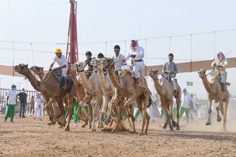 فهد بن جلوي يشرف على انطلاقة أشواط ماراثون مهرجان الهجن - المواطن