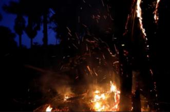 العالم يختنق.. الكشف عن أسباب حرائق الأمازون - المواطن
