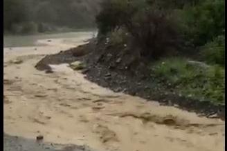 شاهد.. جريان السيول والأودية بعد أمطار رجال ألمع - المواطن