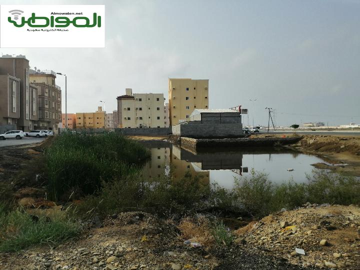 صور مستنقعات مياه الأمطار تنذر بكارثة في حي السويس بجازان صحيفة المواطن الإلكترونية