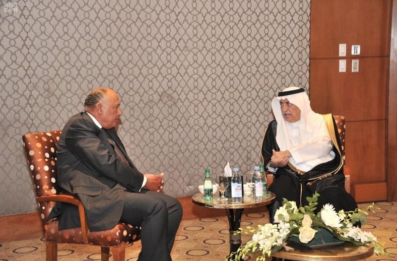وزير الخارجية يبحث مع نظيره المصري تطورات الأوضاع بالمنطقة