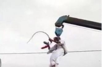 فيديو.. عريس يُحيّي المعازيم بطريقة غريبة - المواطن