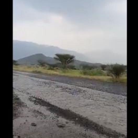 شاهد.. أمطار غزيرة شمال العارضة بجازان