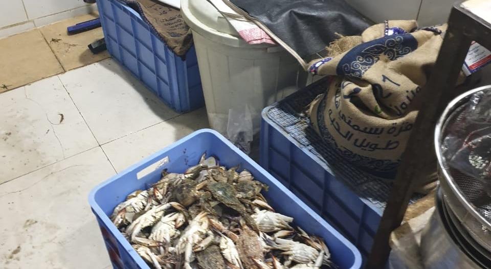 مصادرة 129 كجم أسماك و40 كجم روبيان فاسد في الرس