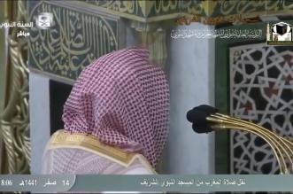 فيديو.. تلاوة مؤثرة من خالد المهنا بعد تعيينه إمامًا بالمسجد النبوي - المواطن