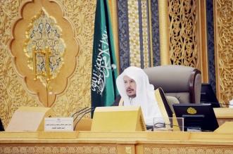 الشورى يطالب التأمينات الاجتماعية بتطوير إجراءات التحصيل ومراجعة نظام ساند - المواطن