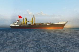تحذير أمريكي: سفن صينية تخفي شحنات نفط إيران - المواطن