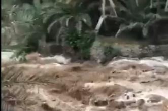 شاهد.. جريان السيول في عمان بعد أمطار الجمعة - المواطن