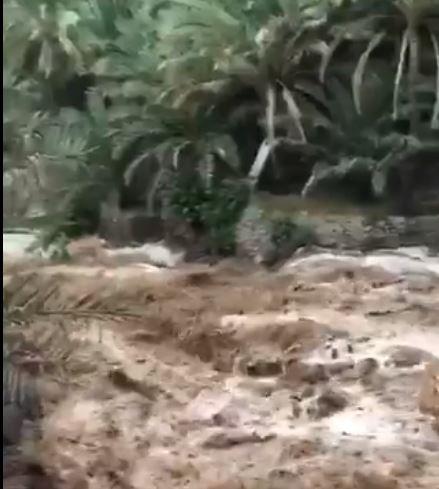 شاهد.. جريان السيول في عمان بعد أمطار الجمعة