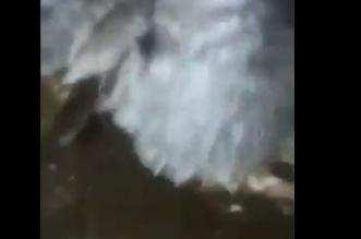شاهد.. أمواج المد البحري تقتحم منزلًا في ولاية بركاء العمانية - المواطن
