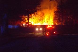 فيديو وصور.. حريق يلتهم أكبر منزل شجرة في العالم - المواطن