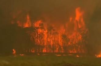 حرائق الغابات استراليا