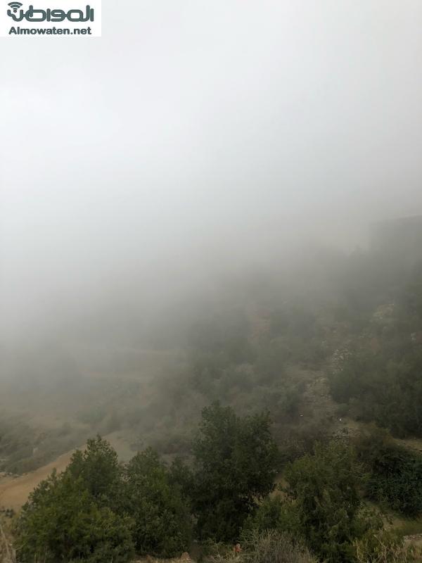 صور.. أجواء الباحة ضباب وغيوم وطبيعة خلابة