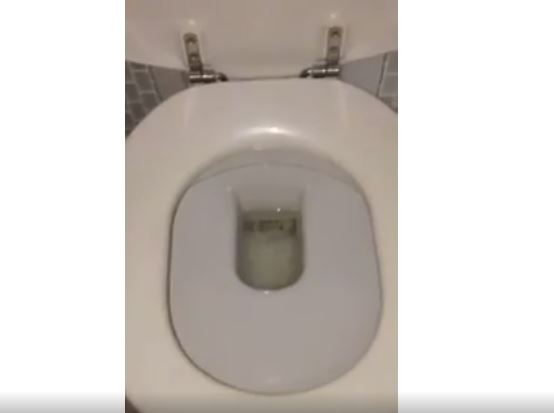 تفحص مرحاضك قبل الاستعمال وإلا !