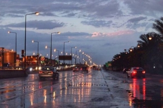 أمطار رعدية وغبار على 8 مناطق - المواطن