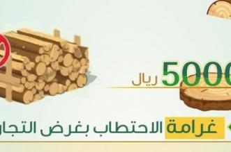 تعرف على عقوبة الاحتطاب وقطع الأشجار - المواطن