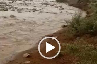 شاهد بالفيديو.. أمطار الخير بالشمالية عرعر والجوف وحائل - المواطن