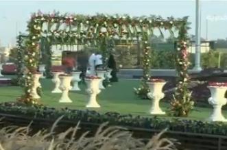 فيديو.. مليون زهرة تزين وسط العوامية - المواطن