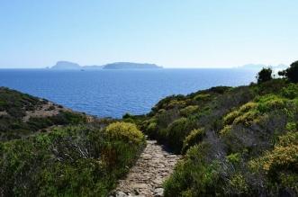 زانون: الجزيرة المحرمة في #إيطاليا - المواطن