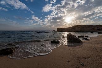 شواطئ الوجه.. جمال الطبيعة البكر وروعة الشعاب المرجانية - المواطن