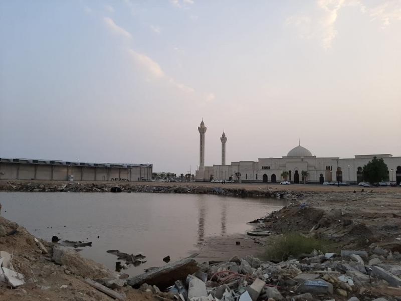 المستنقعات والبعوض يحاصران حي المطار وأمانة #جازان على الصامت - المواطن