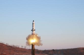 صاروخ كوري شمالي يسقط قبالة جزيرة يابانية بالخطأ - المواطن
