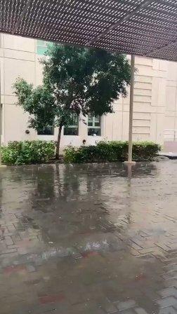 شاهد بالفيديو.. أمطار جدة صباح اليوم