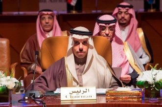 توقيع ميثاق مجلس الدول المشاطئة للبحر الأحمر وخليج عدن - المواطن