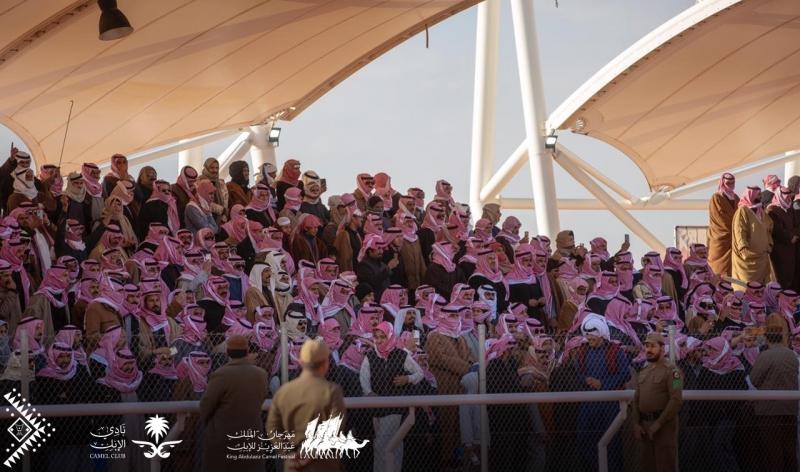 6 فعاليات تميز النسخة الرابعة لمهرجان الملك عبدالعزيز للإبل - المواطن