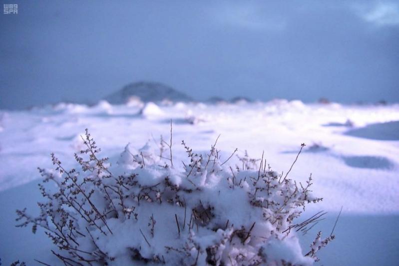 تساقط الثلوج وانخفاض الحرارة ضمن موجة تقلبات جوية غدًا