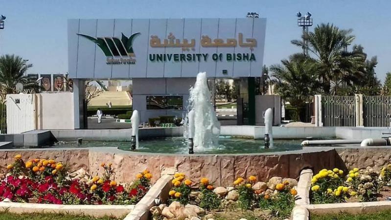 جامعة بيشة التوظيف