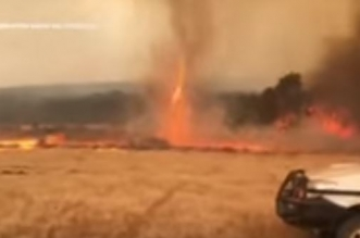 حرائق غابات استراليا