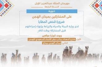مهرجان الإبل يطالب بفحص المطايا المشاركة بميدان الهجن - المواطن
