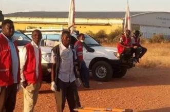 سقوط طائرة سودانية على متنها مسؤولون ووفاة طاقمها - المواطن