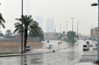 طقس غير مستقر غدًا.. أمطار وغبار - المواطن