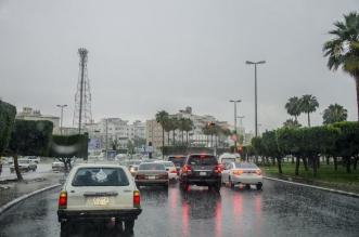 توقعات الأمطار خلال الـ36 ساعة المقبلة - المواطن