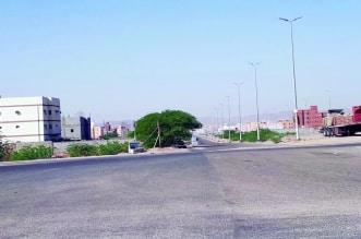 مواصلة أعمال التهيئة الترابية في مخططات ولي العهد والمنح في مكة - المواطن