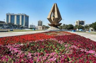 شاهد.. أربعة ملايين زهرة تزين شوارع وكورنيش وحدائق الخبر - المواطن
