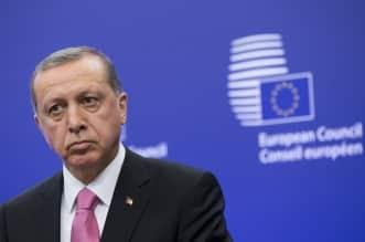 ماذا يريد أردوغان ؟ - المواطن
