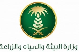 وزارة البيئة تدعو المتقدمين على وظائفها للمقابلة الشخصية - المواطن